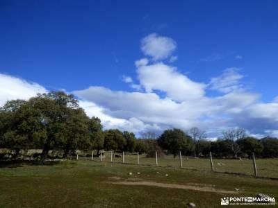 Alto del Pinar, Dehesa de Navalquejigo;viajes otoño rutas de senderismo en cuenca excursiones para